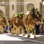 predazzo desmontegada 2015 4 ottobre predazzoblog113 150x150 Desmontegada 2015 di Predazzo   Le Foto