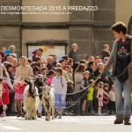 predazzo desmontegada 2015 4 ottobre predazzoblog133 150x150 Desmontegada 2015 di Predazzo   Le Foto