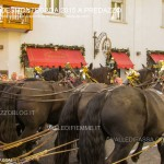 predazzo desmontegada 2015 4 ottobre predazzoblog176 150x150 Desmontegada 2015 di Predazzo   Le Foto