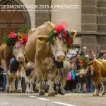predazzo desmontegada 2015 4 ottobre predazzoblog191 150x150 Desmontegada 2015 di Predazzo   Le Foto