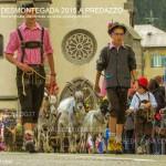 predazzo desmontegada 2015 4 ottobre predazzoblog242 150x150 Desmontegada 2015 di Predazzo   Le Foto