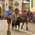 predazzo desmontegada 2015 4 ottobre predazzoblog257 150x150 Desmontegada 2015 di Predazzo   Le Foto
