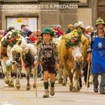 predazzo desmontegada 2015 4 ottobre predazzoblog264 150x150 Desmontegada 2015 di Predazzo   Le Foto