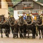 predazzo desmontegada 2015 4 ottobre predazzoblog282 150x150 Desmontegada 2015 di Predazzo   Le Foto