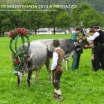predazzo desmontegada 2015 4 ottobre predazzoblog3 150x150 Desmontegada 2015 di Predazzo   Le Foto