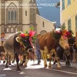 predazzo desmontegada 2015 4 ottobre predazzoblog70 150x150 Desmontegada 2015 di Predazzo   Le Foto
