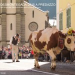 predazzo desmontegada 2015 4 ottobre predazzoblog95 150x150 Desmontegada 2015 di Predazzo   Le Foto