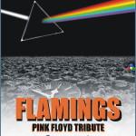 concerto pink floyd parto per fiemme 150x150 È IL MOMENTO DI TESTIMONIARE!!! Salviamo lOspedale di Fiemme!!