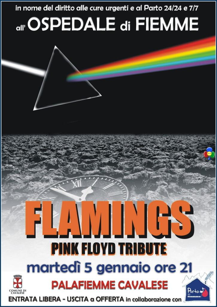 concerto pink floyd parto per fiemme 725x1024 Flamings Pink Floyd Tribute al PalaFiemme per salvare lOspedale