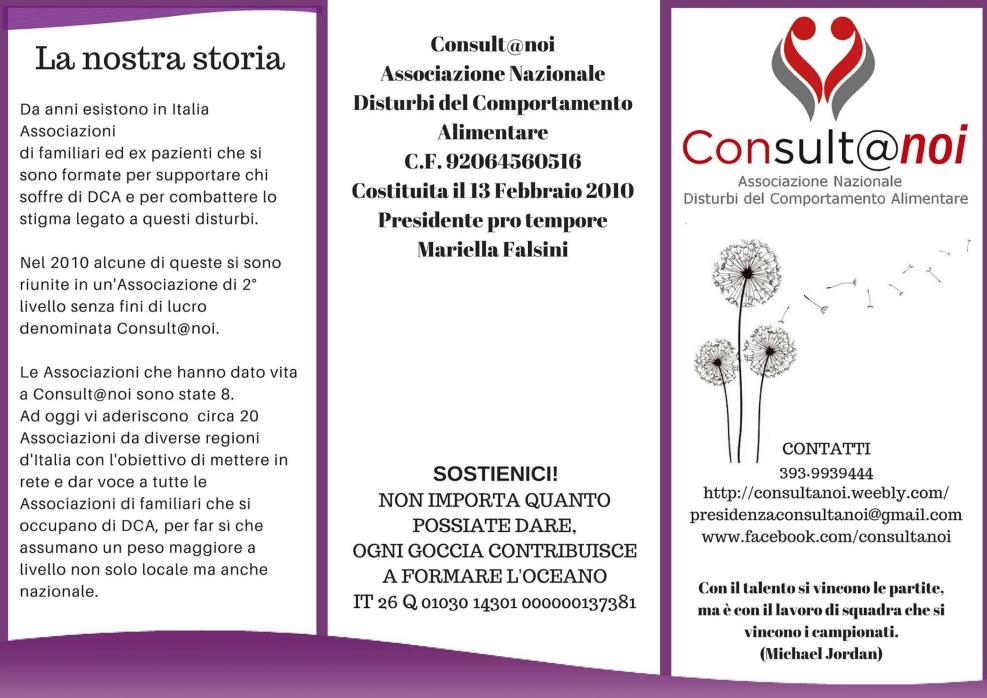 consultanoi 15 marzo 2016, una fontana lilla a Predazzo e Cavalese