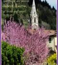 chiesa predazzo primavera