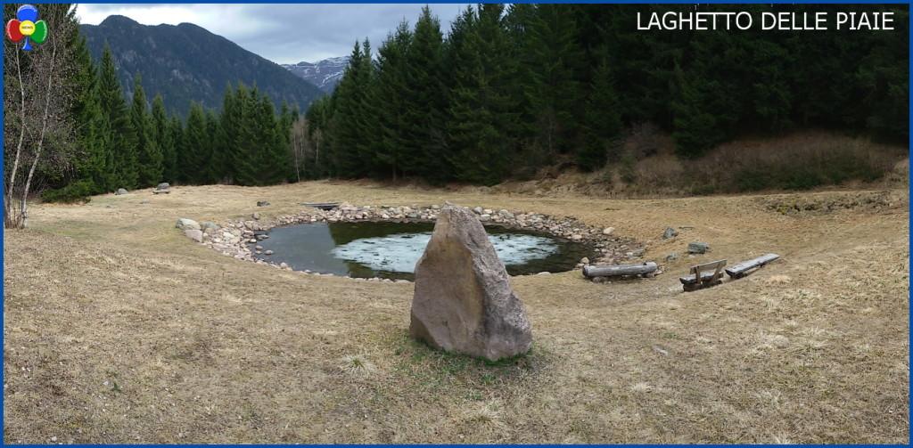laghetto delle piaie 1024x503 Svelato il mistero delle 100 rane morte al laghetto delle Piaie
