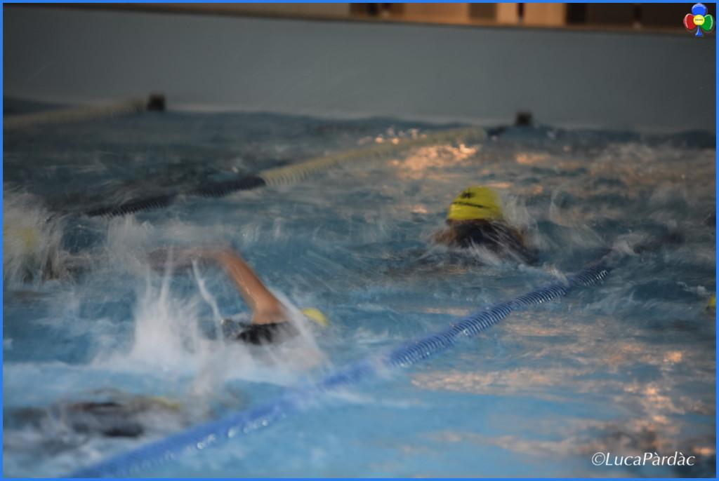 triathlon predazzo 1024x686 U.S. Dolomitica, calendario manifestazioni estate 2016