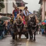 desmontegada 2016 predazzo119 150x150 La pioggia non ferma la Desmontegada di Predazzo   Le foto