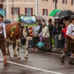 desmontegada 2016 predazzo13 150x150 La pioggia non ferma la Desmontegada di Predazzo   Le foto