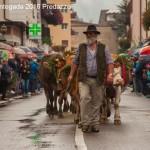 desmontegada 2016 predazzo31 150x150 La pioggia non ferma la Desmontegada di Predazzo   Le foto
