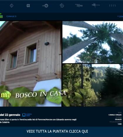 melaverde bosco in casa