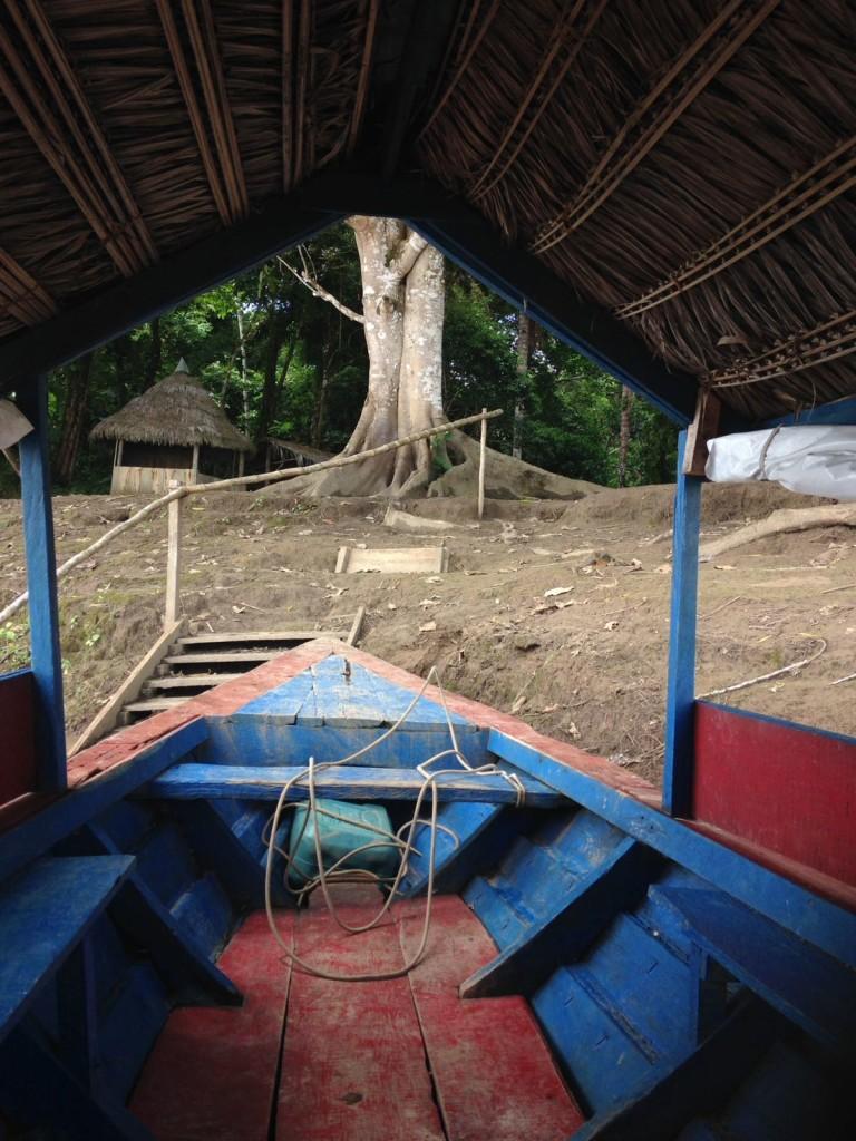 """6156071d 8c3d 4dc2 b142 6fba4b0a2278 768x1024 Valeria Tomasi in Amazzonia, custode della biodiversità"""""""