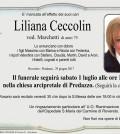 Ceccolin Liliana