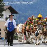 c desmontegada predazzo 2017 ph lorenzo delugani1 150x150 Concorso Fotografico Emozioni in un Click 2017