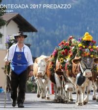c desmontegada predazzo 2017 ph lorenzo delugani1