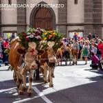 desmontegada 2017 predazzo by mauro morandini16 150x150 Desmontegada 2017 Predazzo   Le foto della sfilata
