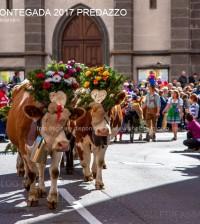 desmontegada 2017 predazzo by mauro morandini16