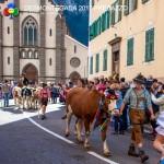 desmontegada 2017 predazzo by mauro morandini21 150x150 Desmontegada 2017 Predazzo   Le foto della sfilata
