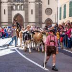 desmontegada 2017 predazzo by mauro morandini22 150x150 Desmontegada 2017 Predazzo   Le foto della sfilata