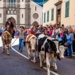 desmontegada 2017 predazzo by mauro morandini24 150x150 Desmontegada 2017 Predazzo   Le foto della sfilata