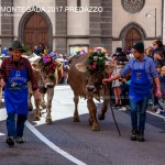 desmontegada 2017 predazzo by mauro morandini33 150x150 Desmontegada 2017 Predazzo   Le foto della sfilata