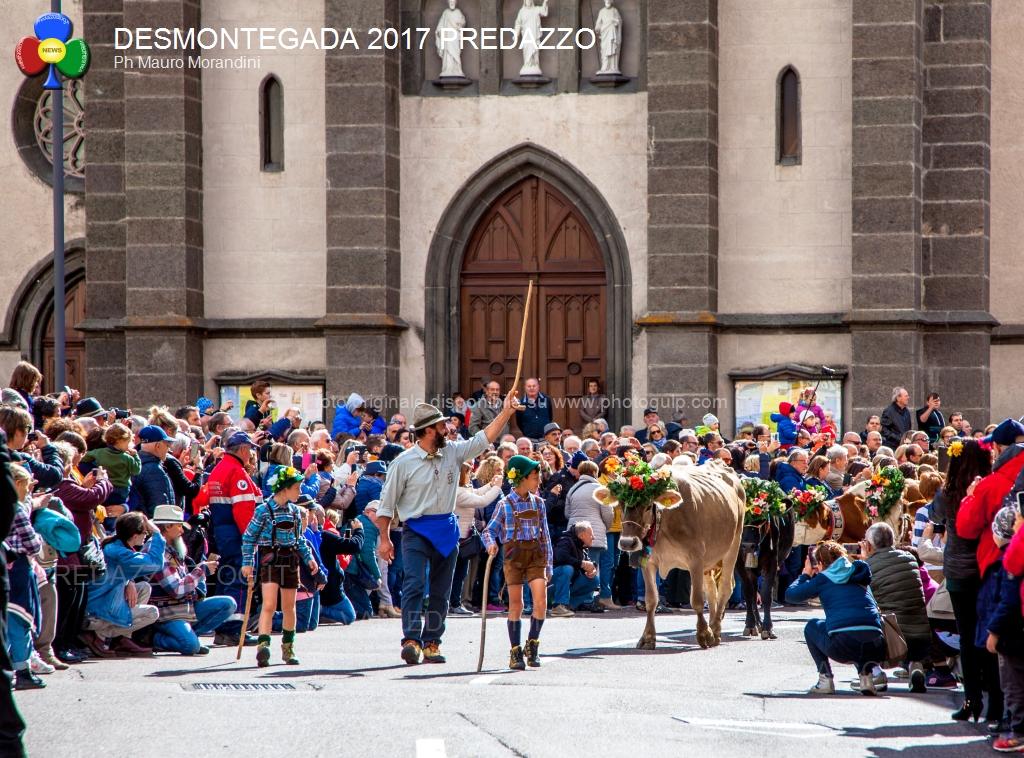 desmontegada 2017 predazzo by mauro morandini40 La Desmontegada de le Vache & Festival del Gusto. 7 Ottobre 2018