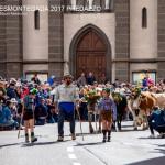 desmontegada 2017 predazzo by mauro morandini42 150x150 Desmontegada 2017 Predazzo   Le foto della sfilata