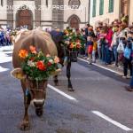 desmontegada 2017 predazzo by mauro morandini46 150x150 Desmontegada 2017 Predazzo   Le foto della sfilata