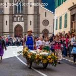 desmontegada 2017 predazzo by mauro morandini83 150x150 Desmontegada 2017 Predazzo   Le foto della sfilata
