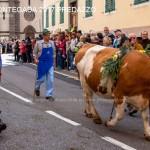 desmontegada 2017 predazzo fiemme by mauro morandini22 150x150 Desmontegada 2017 Predazzo   Le foto della sfilata