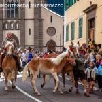 desmontegada 2017 predazzo fiemme by mauro morandini26 150x150 Desmontegada 2017 Predazzo   Le foto della sfilata