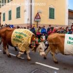 desmontegada 2017 predazzo fiemme by mauro morandini9 150x150 Desmontegada 2017 Predazzo   Le foto della sfilata