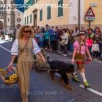 desmontegada 2017 predazzo ph mauro morandini37 150x150 Desmontegada 2017 Predazzo   Le foto della sfilata