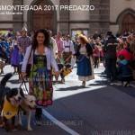 desmontegada 2017 predazzo ph mauro morandini44 150x150 Desmontegada 2017 Predazzo   Le foto della sfilata