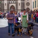 desmontegada 2017 predazzo ph mauro morandini47 150x150 Desmontegada 2017 Predazzo   Le foto della sfilata