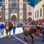 desmontegada 2017 predazzo ph mauro morandini65 150x150 Desmontegada 2017 Predazzo   Le foto della sfilata