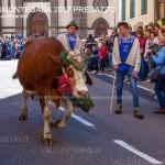 desmontegada 2017 predazzo ph mauro morandini66 150x150 Desmontegada 2017 Predazzo   Le foto della sfilata
