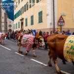 desmontegada predazzo 2017 fiemme by mauro morandini10 150x150 Desmontegada 2017 Predazzo   Le foto della sfilata
