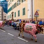desmontegada predazzo 2017 fiemme by mauro morandini11 150x150 Desmontegada 2017 Predazzo   Le foto della sfilata