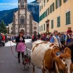 desmontegada predazzo 2017 fiemme by mauro morandini33 150x150 Desmontegada 2017 Predazzo   Le foto della sfilata