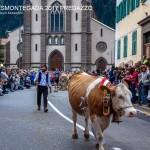 desmontegada predazzo 2017 fiemme by mauro morandini42 150x150 Desmontegada 2017 Predazzo   Le foto della sfilata