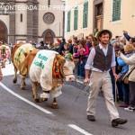 desmontegada predazzo 2017 fiemme by mauro morandini5 150x150 Desmontegada 2017 Predazzo   Le foto della sfilata