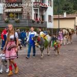 desmontegada predazzo 2017 fiemme by mauro morandini94 150x150 Desmontegada 2017 Predazzo   Le foto della sfilata