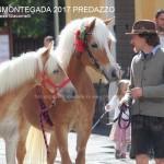 desmontegada predazzo 2017 ph teresa giacomelli14 150x150 Desmontegada 2017 Predazzo   Le foto della sfilata